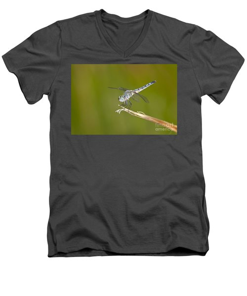 Men's V-Neck T-Shirt featuring the photograph Blue Dasher On The Edge by Bryan Keil