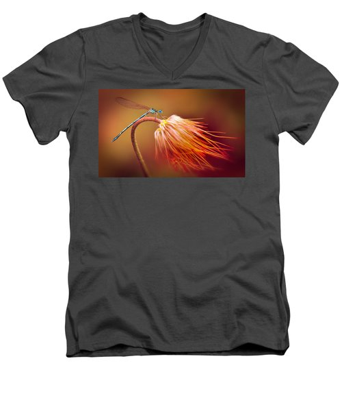 Blue Dragonfly On A Dry Flower Men's V-Neck T-Shirt by Jaroslaw Blaminsky