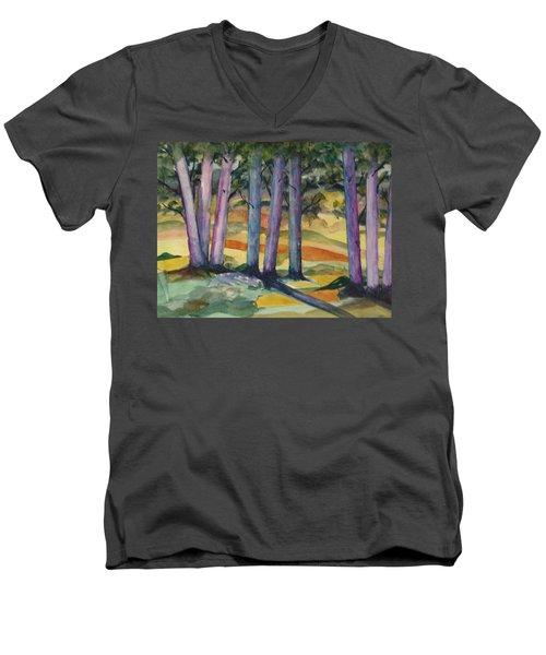 Blue Grove Men's V-Neck T-Shirt