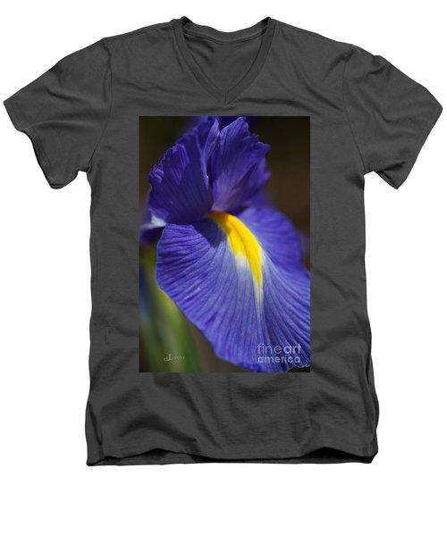 Blue Iris With Yellow Men's V-Neck T-Shirt