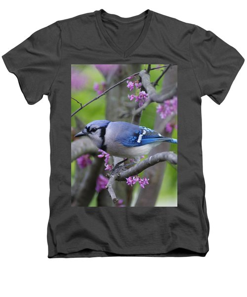 Men's V-Neck T-Shirt featuring the photograph Blue Jay  by Heidi Poulin