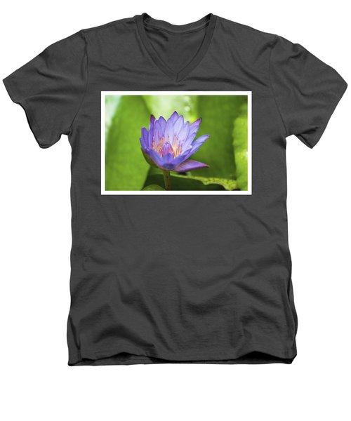 Blue Lotus Men's V-Neck T-Shirt