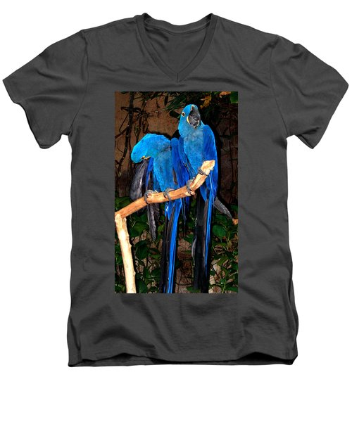 Blue Velvet Men's V-Neck T-Shirt