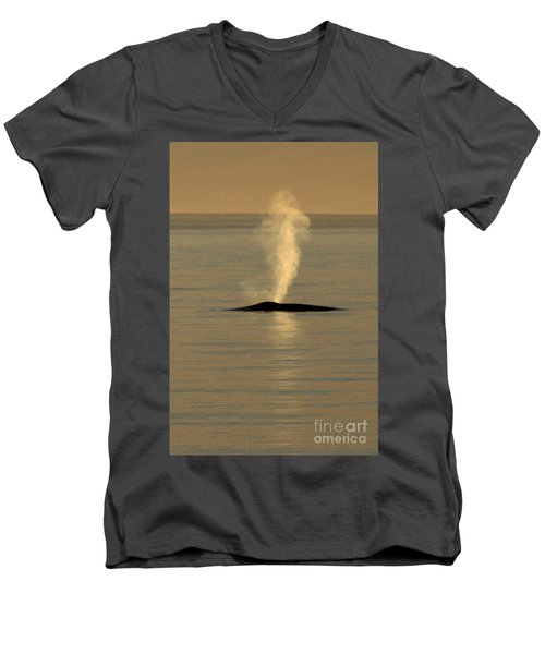 Men's V-Neck T-Shirt featuring the photograph Blue Whale At Sunset In Monterey Bay California  2013 by California Views Mr Pat Hathaway Archives