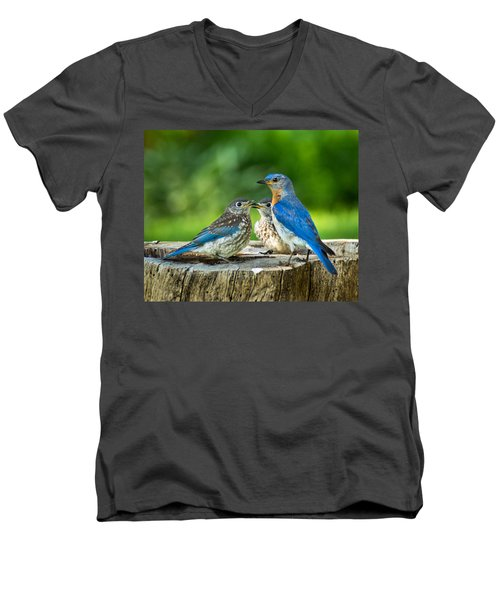 Bluebird - Father And Sons Men's V-Neck T-Shirt