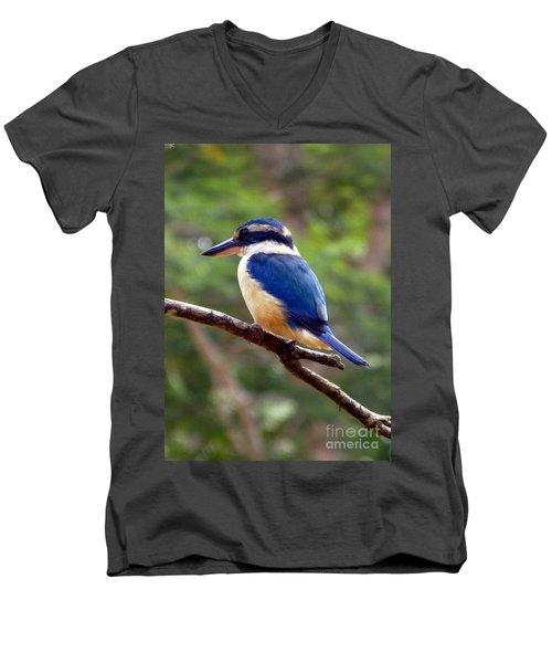 Bluebird In Suva Fiji Men's V-Neck T-Shirt by Barbie Corbett-Newmin