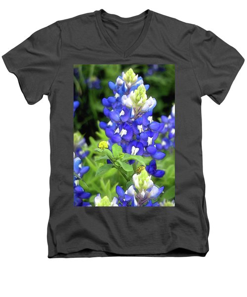Bluebonnets Blooming Men's V-Neck T-Shirt
