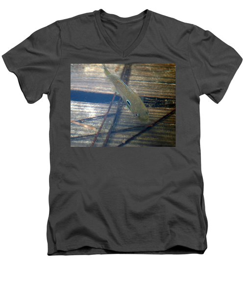 Bluegill On The Hunt Men's V-Neck T-Shirt