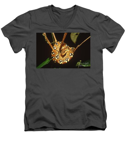 Boa Constrictor Men's V-Neck T-Shirt by Art Wolfe