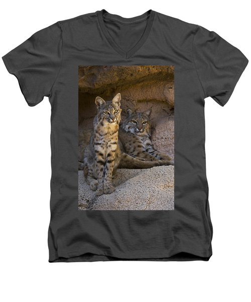 Men's V-Neck T-Shirt featuring the photograph Bobcat 8 by Arterra Picture Library