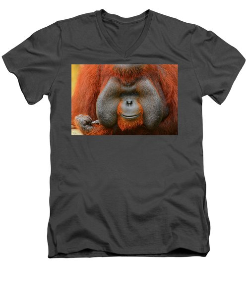 Bornean Orangutan Men's V-Neck T-Shirt by Lourry Legarde