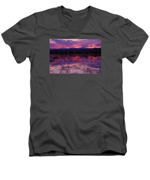 Bosque Sunset - Purple Men's V-Neck T-Shirt