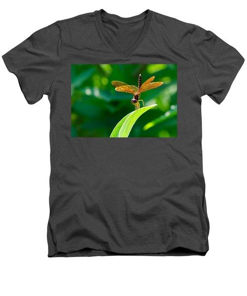 Bottoms Up Men's V-Neck T-Shirt