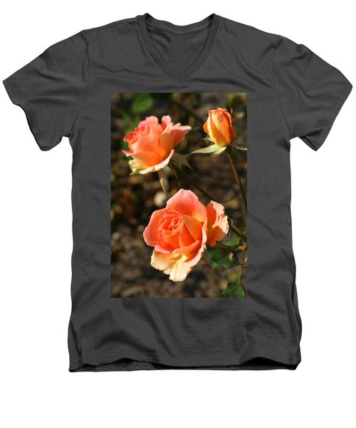 Brass Band Roses In Autumn Men's V-Neck T-Shirt