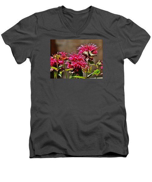 Men's V-Neck T-Shirt featuring the photograph Breakfast At The Bee Balm by VLee Watson