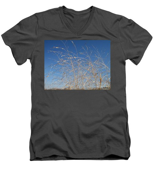 Men's V-Neck T-Shirt featuring the photograph Breeze by Sara  Raber