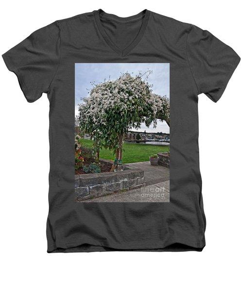 Bridal Veil Vine Stephanotis Growing On A Trellis Men's V-Neck T-Shirt
