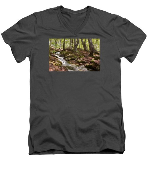 Men's V-Neck T-Shirt featuring the photograph Bright Forest Creek by Dreamland Media