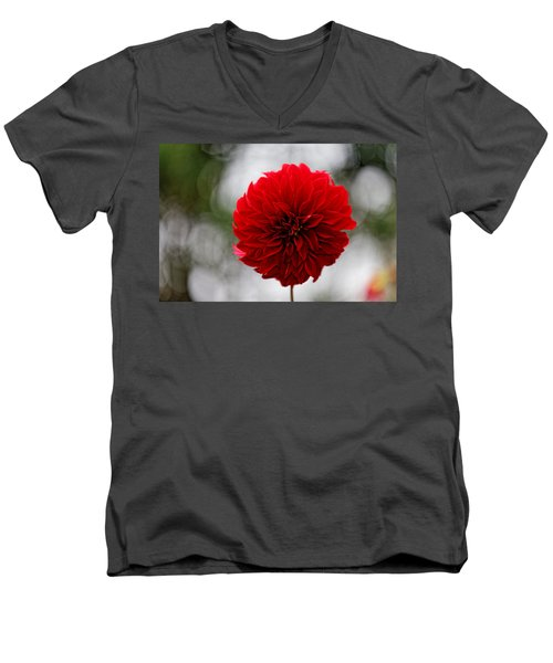 Bright Red Dahlia Men's V-Neck T-Shirt