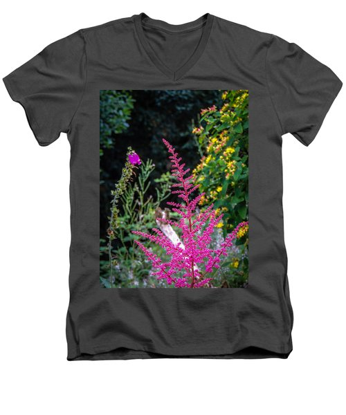 Brilliant Astilbe In Markree Castle Gardens Men's V-Neck T-Shirt