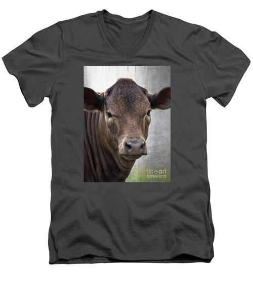 Men's V-Neck T-Shirt featuring the photograph Brown Eyed Boy - Calf Portrait by Ella Kaye Dickey