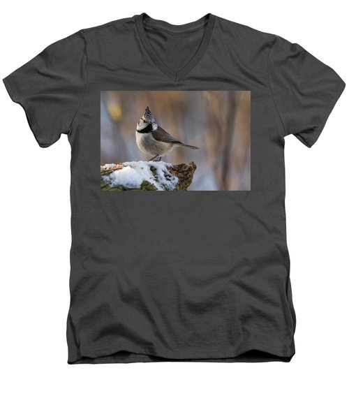 Brown Eyed Girl Men's V-Neck T-Shirt by Torbjorn Swenelius