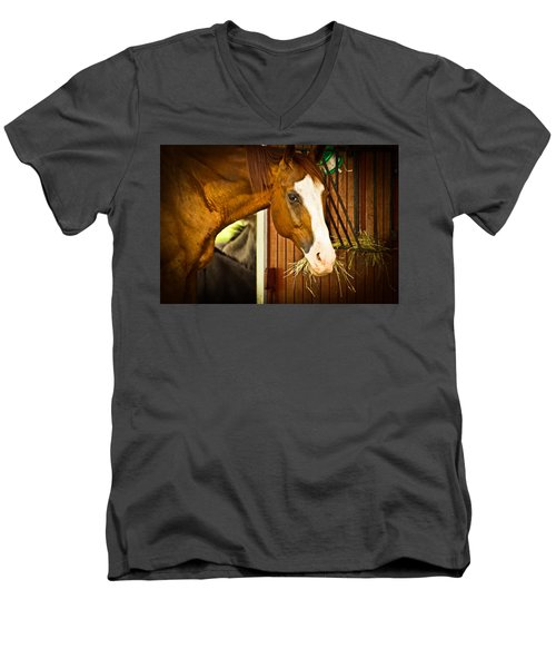 Brown Horse Men's V-Neck T-Shirt by Joann Copeland-Paul