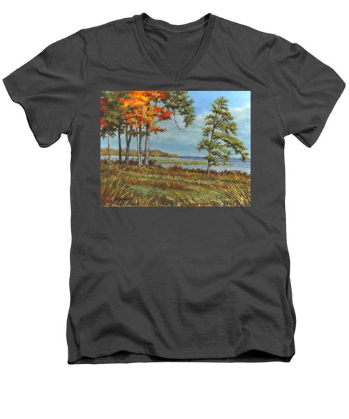 Browns Bay Men's V-Neck T-Shirt