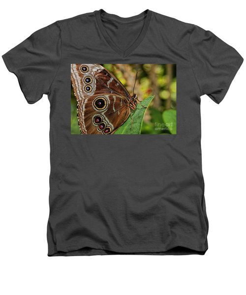 Men's V-Neck T-Shirt featuring the photograph Blue Morpho Butterfly by Olga Hamilton