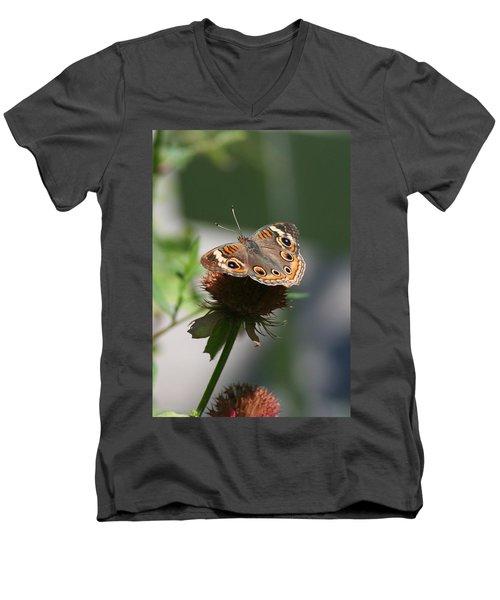 Buckeye Men's V-Neck T-Shirt