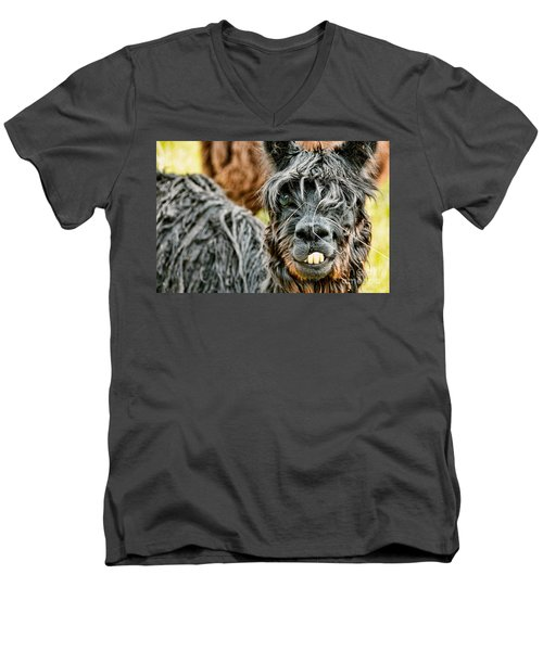 Bucky The Alpaca Men's V-Neck T-Shirt