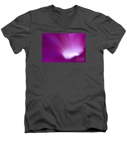 Buddhas Light  Men's V-Neck T-Shirt