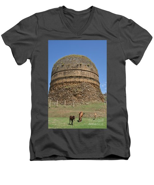 Buddhist Religious Stupa Horse And Mules Swat Valley Pakistan Men's V-Neck T-Shirt by Imran Ahmed