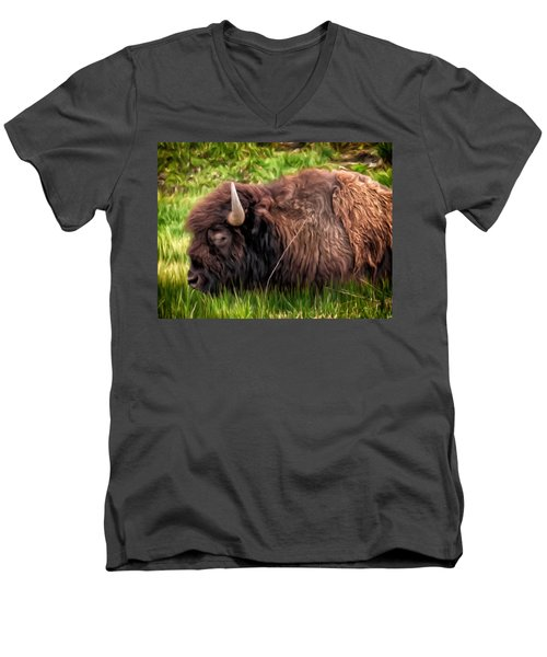 Buffalo Cat Nap Men's V-Neck T-Shirt by Michael Pickett
