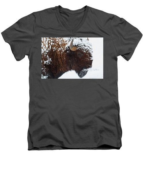 Buffalo Nickel Men's V-Neck T-Shirt by Jim Garrison