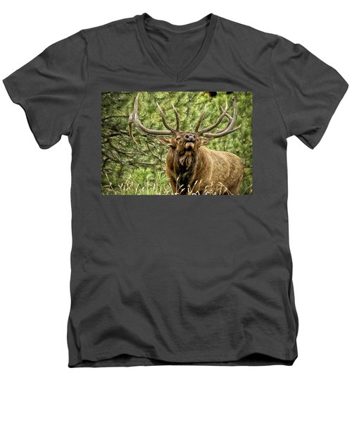 Bugling Bull Elk II Men's V-Neck T-Shirt