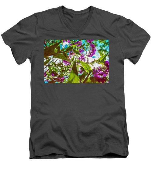Bugs View Men's V-Neck T-Shirt