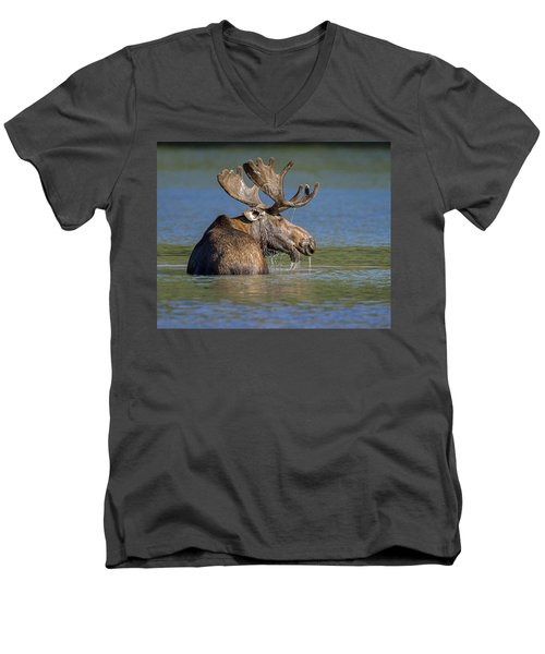 Men's V-Neck T-Shirt featuring the photograph Bull Moose At Fishercap by Jack Bell