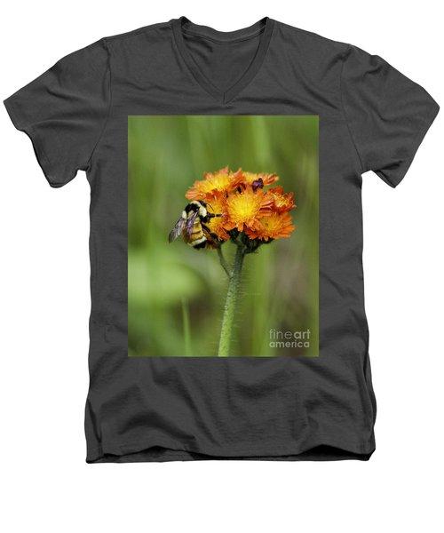Bumble And Hawk Men's V-Neck T-Shirt
