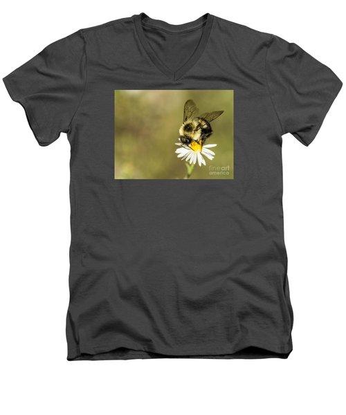 Bumble Bee Macro Men's V-Neck T-Shirt by Debbie Green