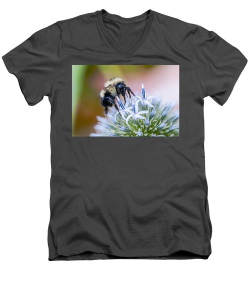 Men's V-Neck T-Shirt featuring the photograph Bumblebee On Thistle Blossom by Marty Saccone