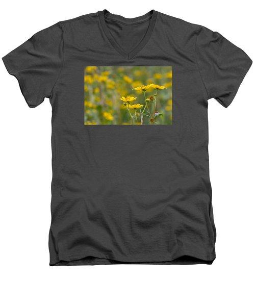 Men's V-Neck T-Shirt featuring the photograph Burrmarigold by Paul Rebmann
