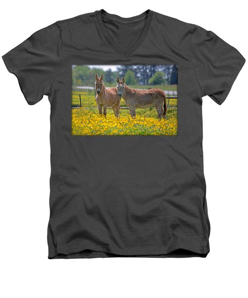 Burros In The Buttercups Men's V-Neck T-Shirt