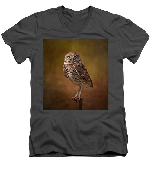 Burrowing Owl Portrait Men's V-Neck T-Shirt