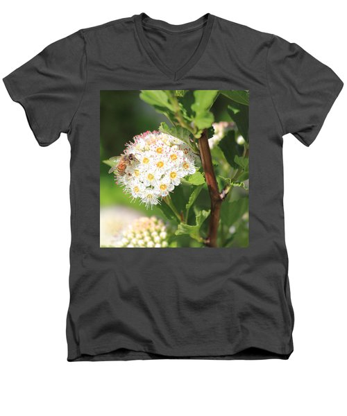 Busy As A Bee Men's V-Neck T-Shirt