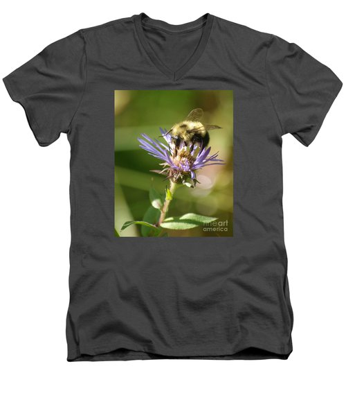 Busy Bee Men's V-Neck T-Shirt