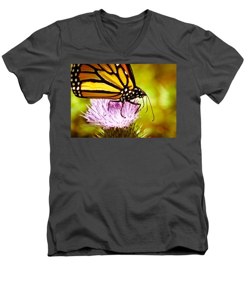 Men's V-Neck T-Shirt featuring the photograph Busy Butterfly by Cheryl Baxter
