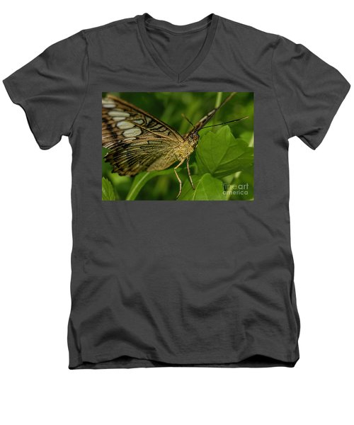 Men's V-Neck T-Shirt featuring the photograph Butterfly 2 by Olga Hamilton