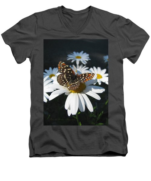 Butterfly And Shasta Daisy - My Spring Garden Men's V-Neck T-Shirt