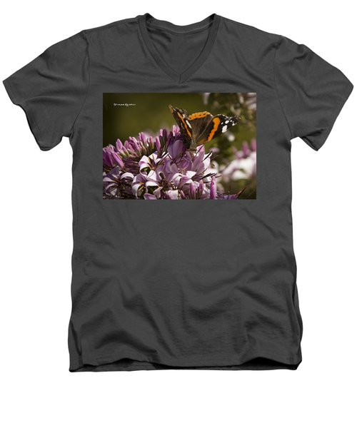 Men's V-Neck T-Shirt featuring the photograph Butterfly Close Up by Stwayne Keubrick